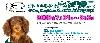 31•7 - 2•8•2009 第四屆香港國際寵物水族用品展